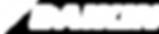 Daikin_Logo_Rev-white.png