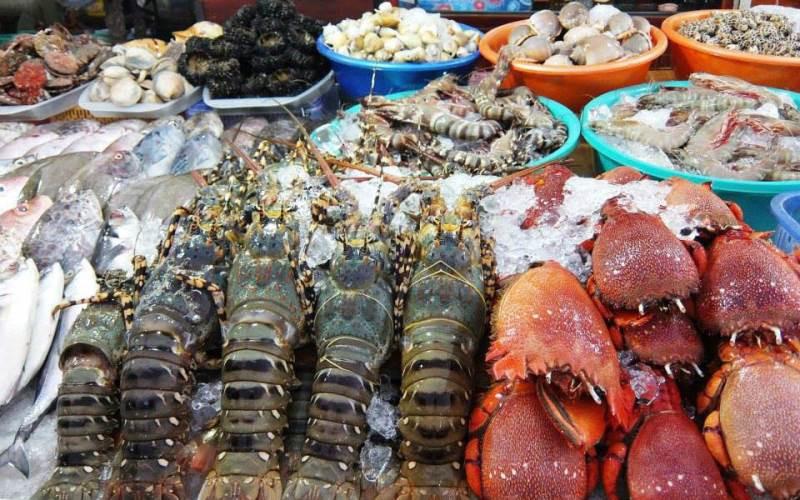 Thế giới tôm hùm tuyệt vời ở Sóng Biển Vũng Tàu