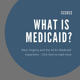 issues_medicaid.png