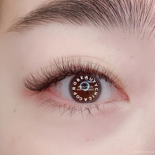5D Eyelashing