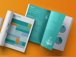 Peer Report Collaborative design with Debbie Willetts