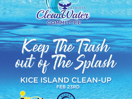 Keep the Trash out of the Splash