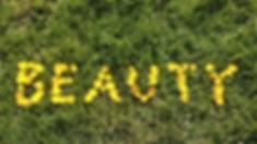 beauty-330730.jpg