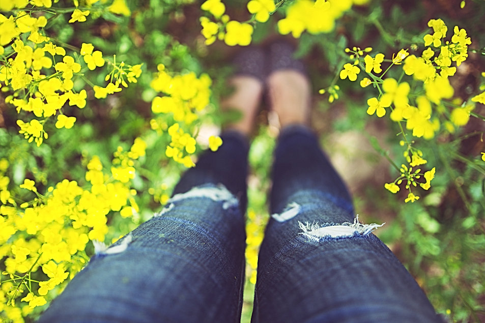 legs-766046.jpg