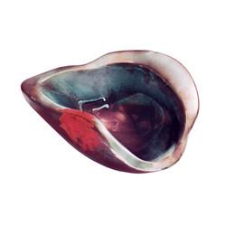 bowl METAMORFOSI medium