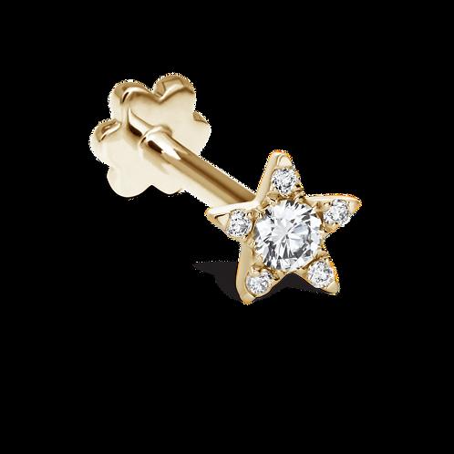 Etoile du Nord de diamants- Maria TASH