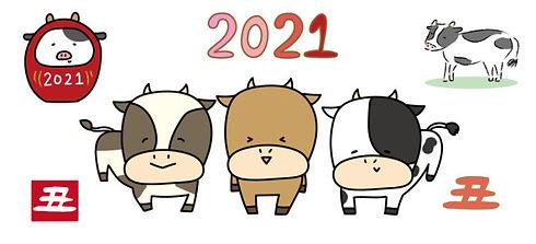 2021 牛.jpg
