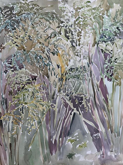Bracken, by Beatrice Hasell-McCosh