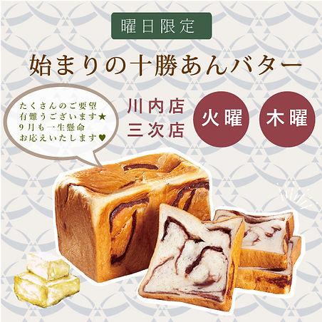 新作パンリリース画像.jpg
