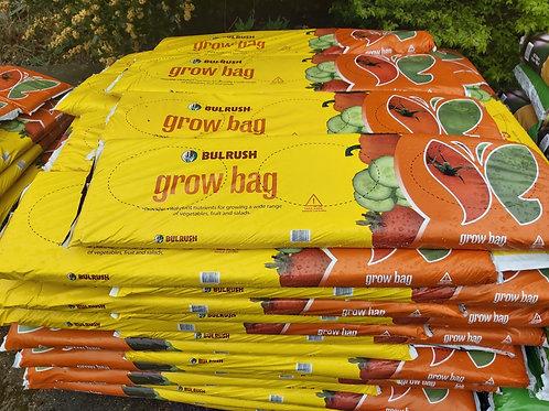 Bulrush Grow Bag
