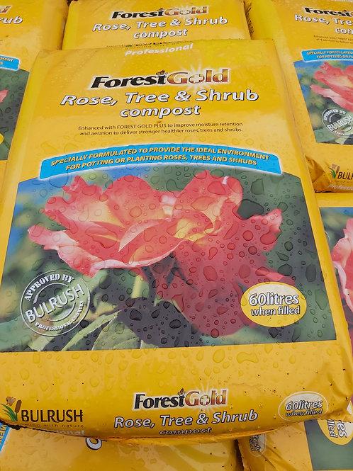 Bulrush Forest Gold