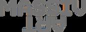 Massivart_logo_wh_edited.png