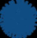 PVAS+Logo+BLU.png