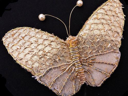Gold lace Butterfly Kit