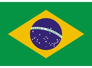 2963 - Bandeira Brasil 45x64 cm