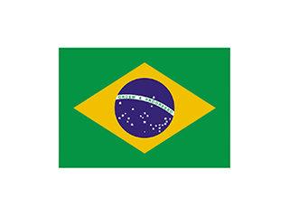 3085 - BANDEIRA BRASIL 22X33cm