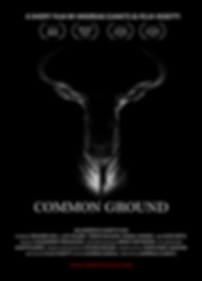 COMMON GROUND Film Poster 2018 pic.png