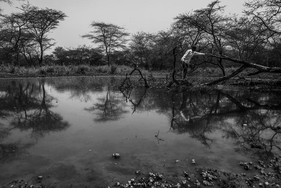 South Sudan diary_33.jpg