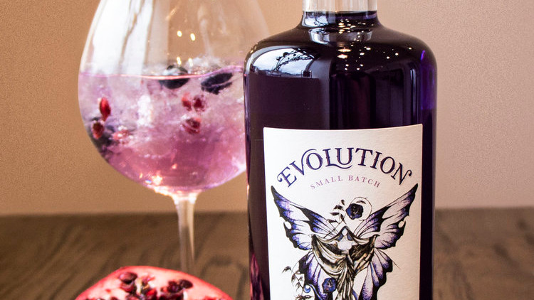 Evolution Gin: Meet the Brand