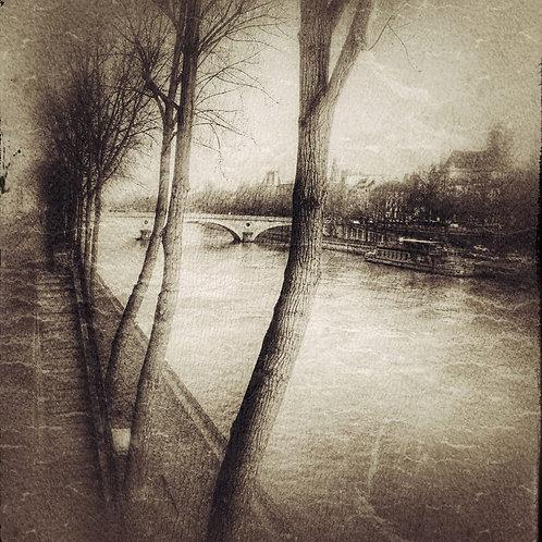 Landscapes 12