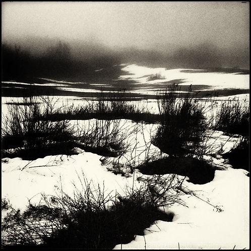 Landscapes 8