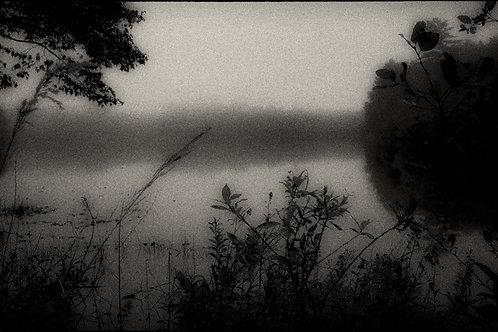 Landscape 29