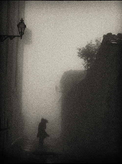 Volterra Fog