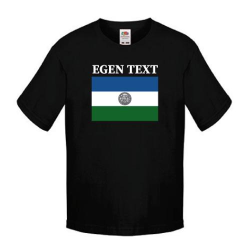 T-shirt Jämtlandsflagga med Ortsnamn