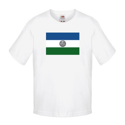 T-shirt Jämtlandsflagga barn