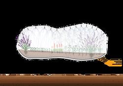 Garden Prototype: Herbs Section