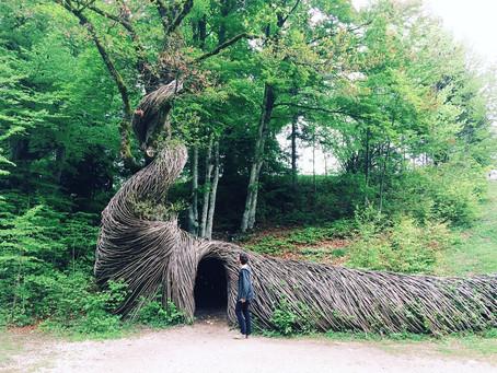 Un bosco di arte contemporanea