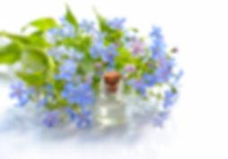 aromatherapy-bloom-blossom-1188511.jpg