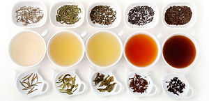 tea-types.jpg