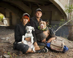 Homeless couple and dogs