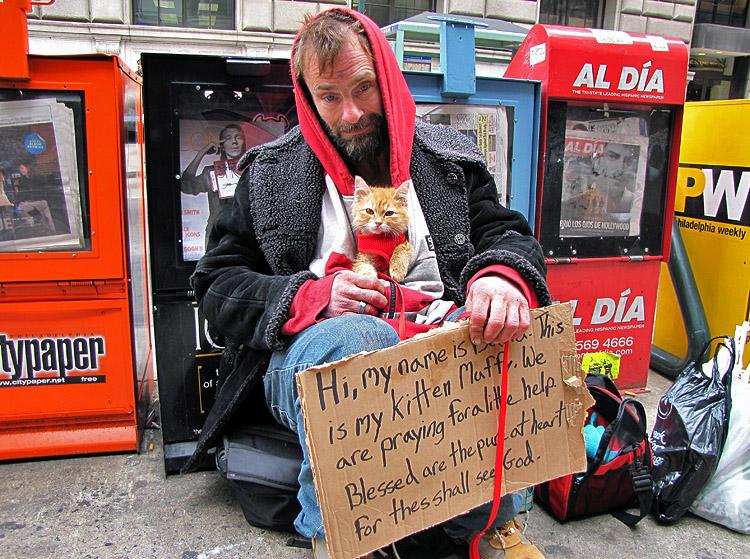 Homeless man and kitten