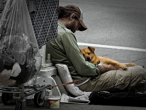 Homeless Man and dog on street