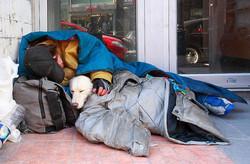 Homeless man sleeping with dog