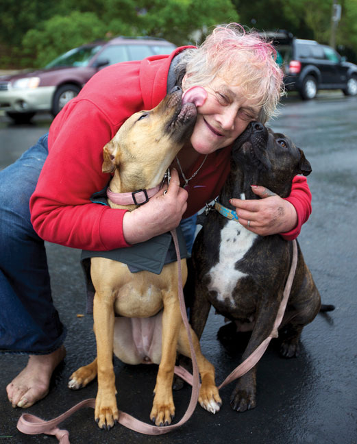 Homeless Woman and dogs