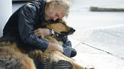 Homeless man and dog on street 2