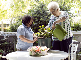 Keeping Cool this Summer: 5 Tips for the Elderly to Beat the Summer Heat