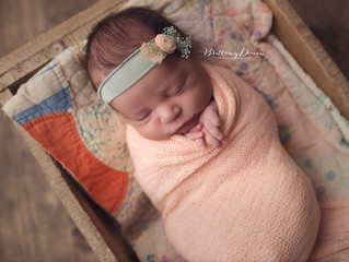 Gianna Rose, Discovery Bay Newborn Photographer, Bay Area Newborn Photographer, Brittany Deacon Phot