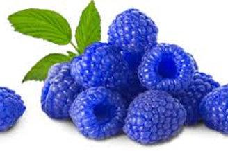 Blue Raspberry Italian Shaved Ice