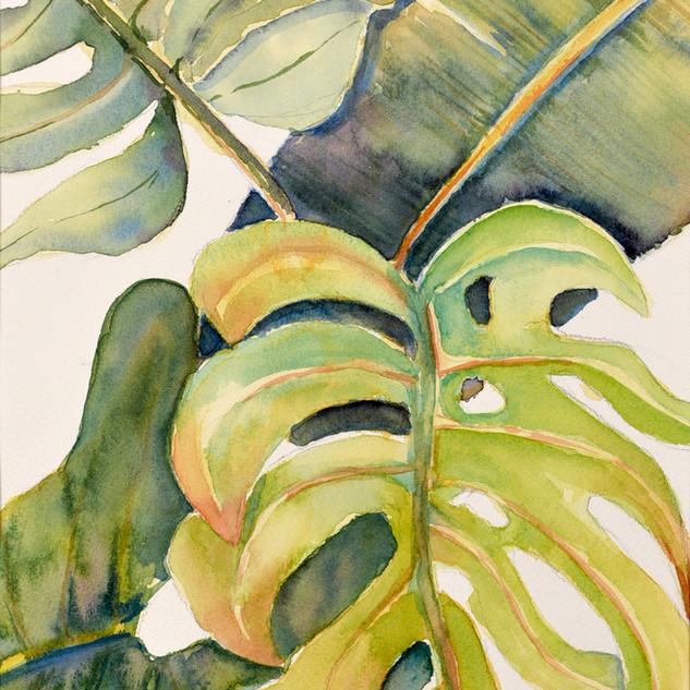 """Tropical Leaves #1"""