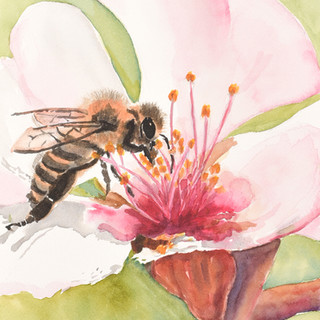 """Buzzy Bee"""