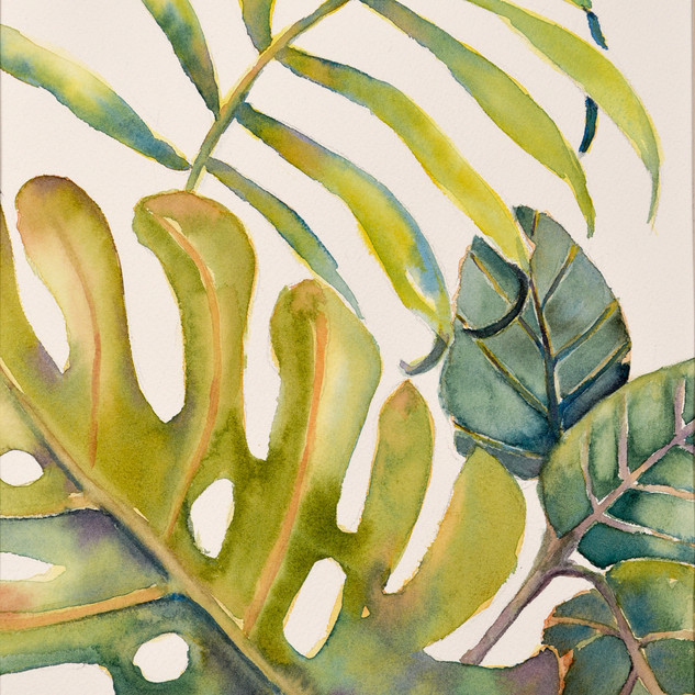 """Tropical Leaves #2"""