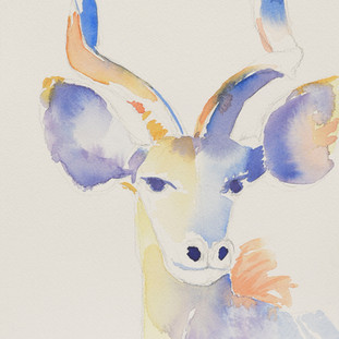 """Kudu"""
