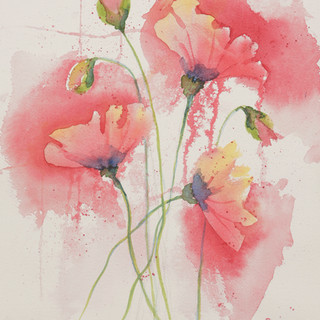 """""""Poppy Morning"""""""