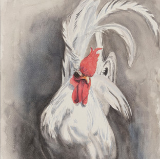 """Japanese Rooster"""