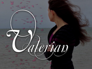 Valerian Bookaversary