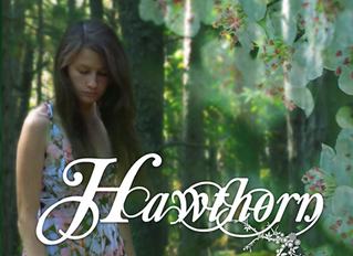 Hawthorn Release Day